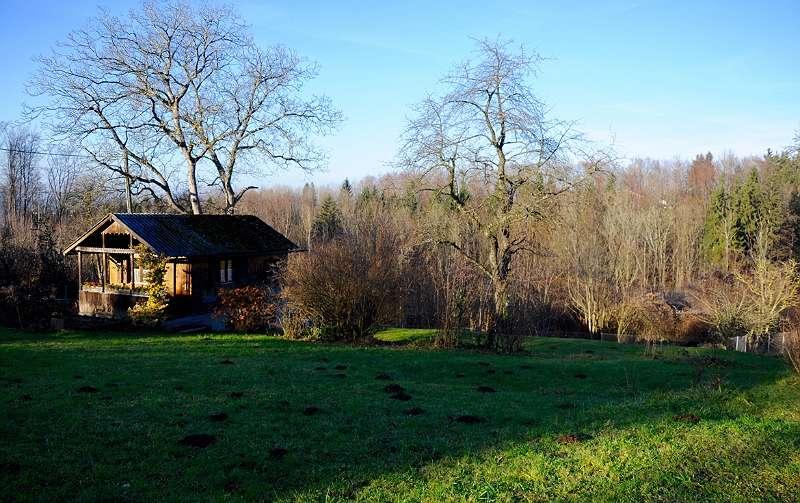 Ansicht mit Gartenhaus