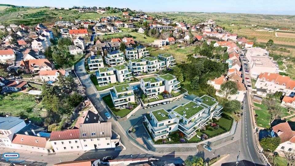 Bild 1 von 17 - Weingartensiedlung ob der Krems - Kraxenweg