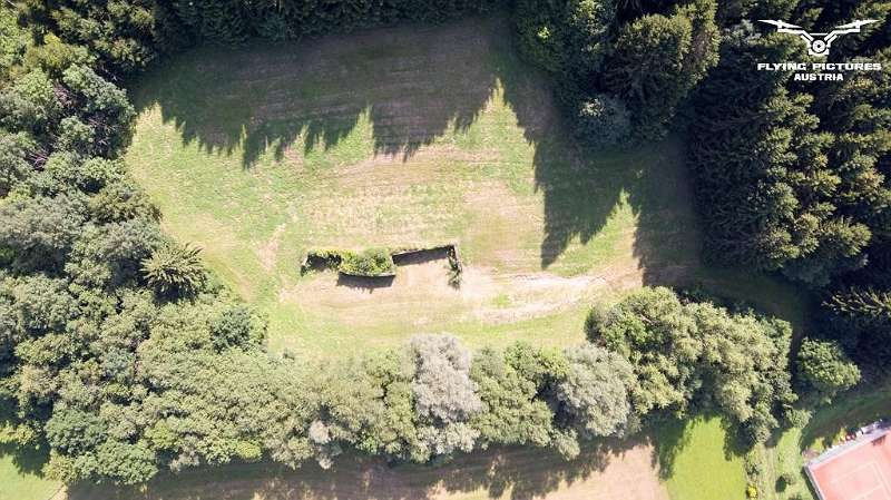 bestehendes Mauerwerk mit Waldanteil