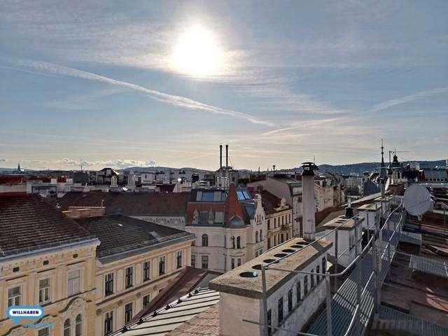 Leben in den Dächern der Josefstadt
