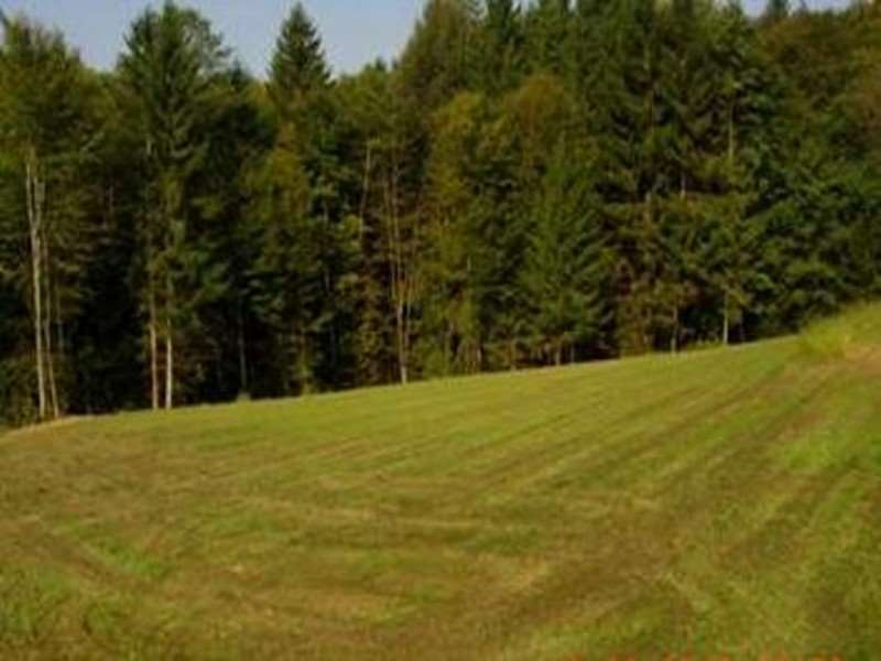 Grundstück Laßnitzthal 3400 m²