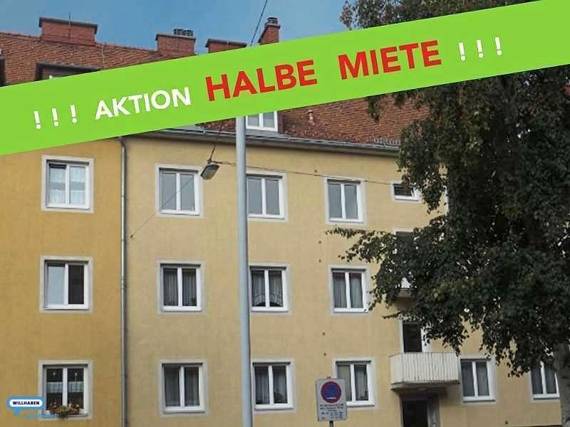 Bild 1 von 13 - Bild