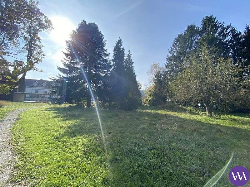Bild 1 von 10 - Grundstück