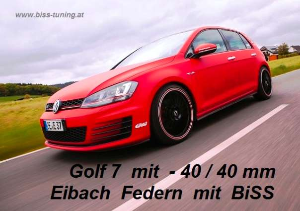 audi seat skoda vw tuning eibach federn 30 mm bis 50 mm. Black Bedroom Furniture Sets. Home Design Ideas