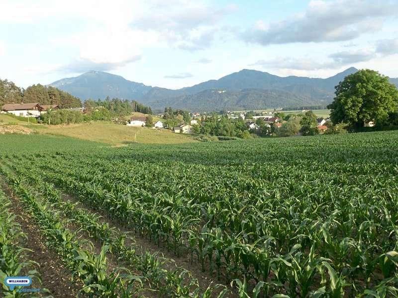 Bild 1 von 5 - Grundstück