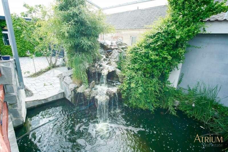 Bild 1 von 8 - Teich