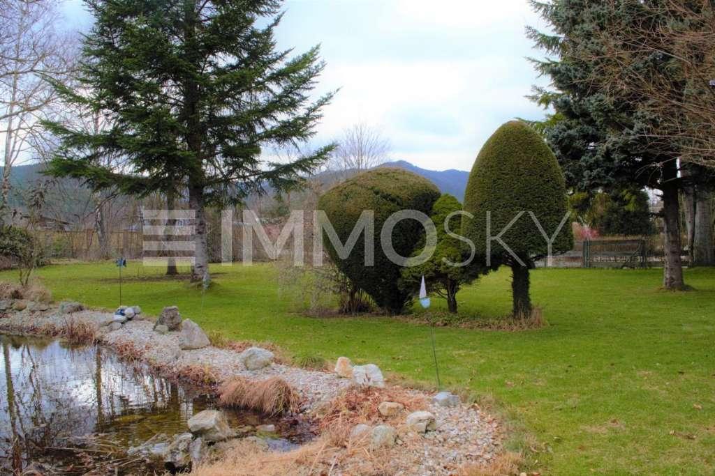 Bild 1 von 2 - Biotop im Garten