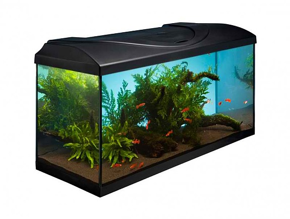 led aquarium set 80cm 112l neu 108 2191 gaweinstal willhaben. Black Bedroom Furniture Sets. Home Design Ideas