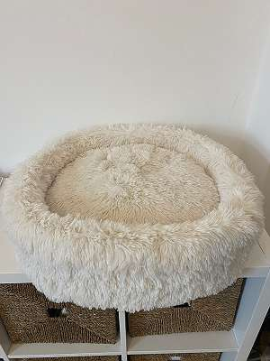 New dog / cat bed