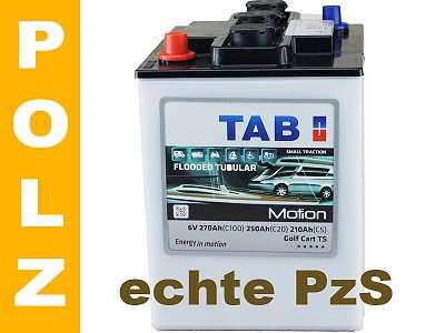 PZS Batterie 6V 250AH/ C20 270AH/ C100 für Inselanlagen Gartenhaus Photovoltaik Solar und Boot