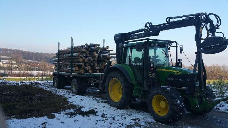 Baumabtransport und Holzentsorgung