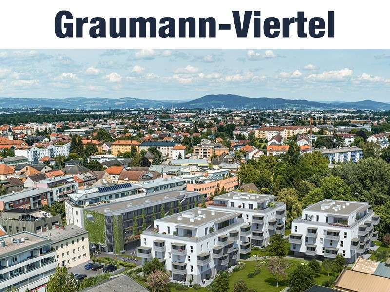 Bild 1 von 13 - Titelbilder GMV 12