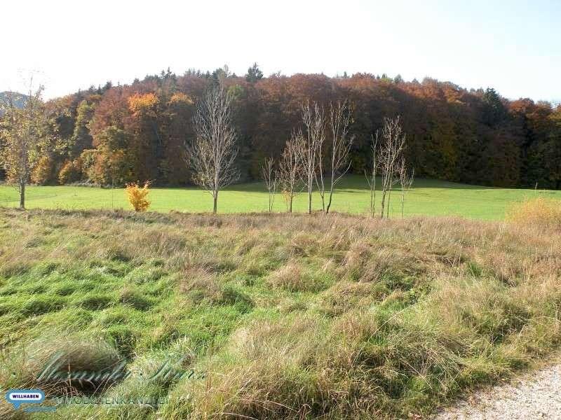 Bild 1 von 1 - Grundstück in Großgmain Immobilienkanzlei Kurz Salzburg