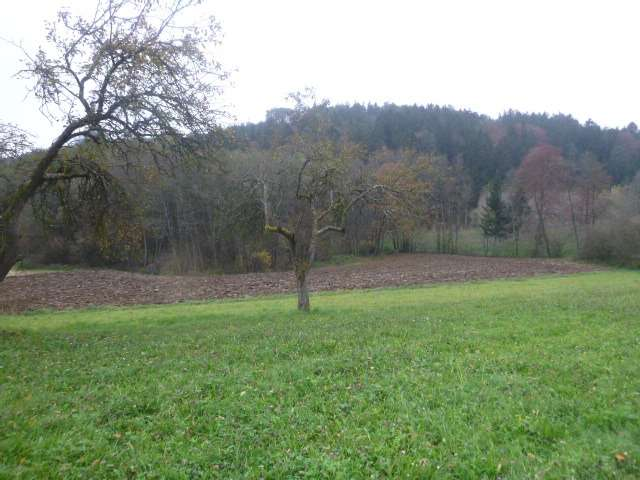Bild 1 von 5