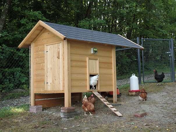 h hnerstall h hnerhaus 890 4675 weibern willhaben. Black Bedroom Furniture Sets. Home Design Ideas