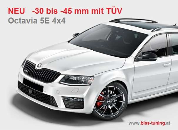 skoda octavia 5e incl 4x4 und superb iii 3v eibach. Black Bedroom Furniture Sets. Home Design Ideas