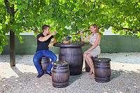 Fasstisch Bistrotisch Gartentisch Gartengarnitur Biergarten Weinlaube Fasshocker