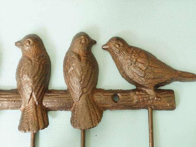 Vögel mit 5 Haken