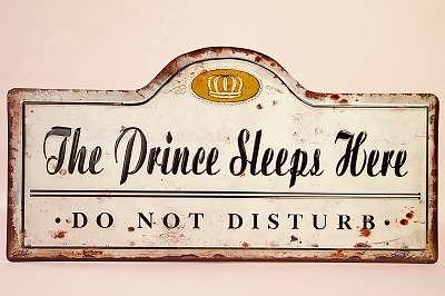 50 cm BREITE! The Prince sleeps here! GENIALES Schild im Vintage-Stil Kind Sohn Bruder Freund Bekannter / Haustier Hund Kater Katze