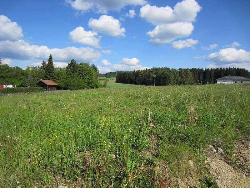 Bild 1 von 6 - Grundstück