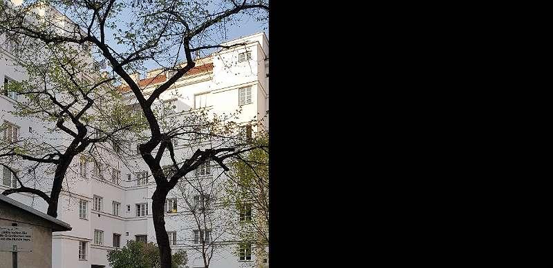 Gemeindewohnung Direktvergabe Vormerkschein Von Wiener Wohnen Bis