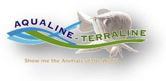 Aqualine - Terraline