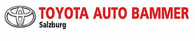 Logo von Bammer Autohandel u. Service Ges.m.b.H. & Co. KG