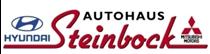 Autohaus Steinbock