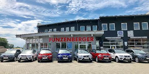Punzenberger GmbH