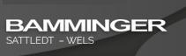 Logo von Autohaus Bamminger Wels