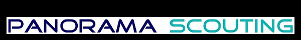 Panorama Scouting GmbH