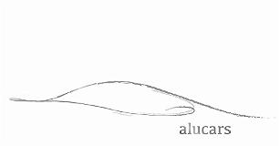 Logo von Alucars e.U.